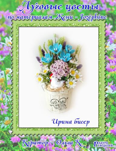 Галерея выпускников: Луговые цветы 1d6f142b9cbc91fd8c6ae5e264edbd3b