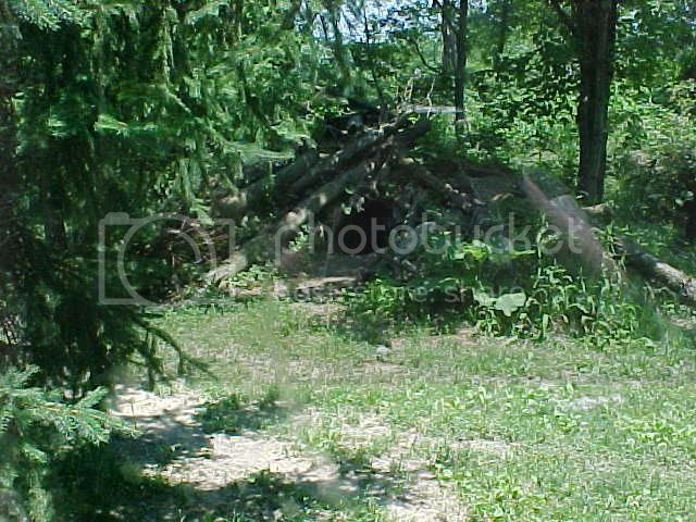 timber_wolf_den.jpg Leaders Den image by brandibnj4