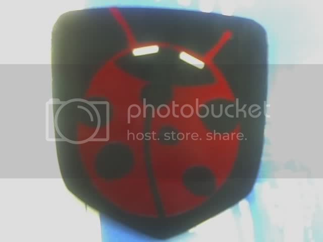 Made this a while back... Ladybug