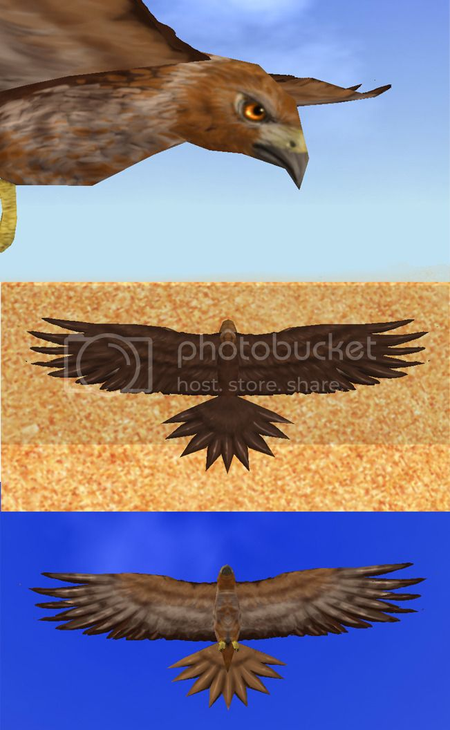Draak's Retextures  - Page 2 Hawkmakeover