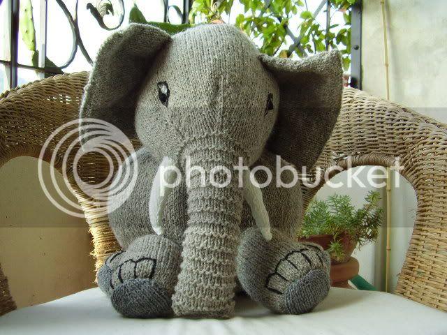 Elefante in maglia P6280169
