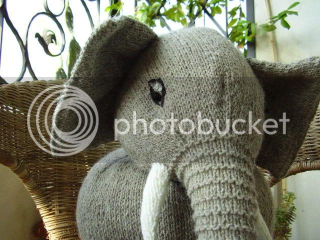 Elefante in maglia P6280171