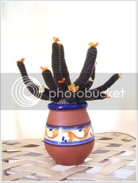 Cactus amigurumi Cactusamigurumi