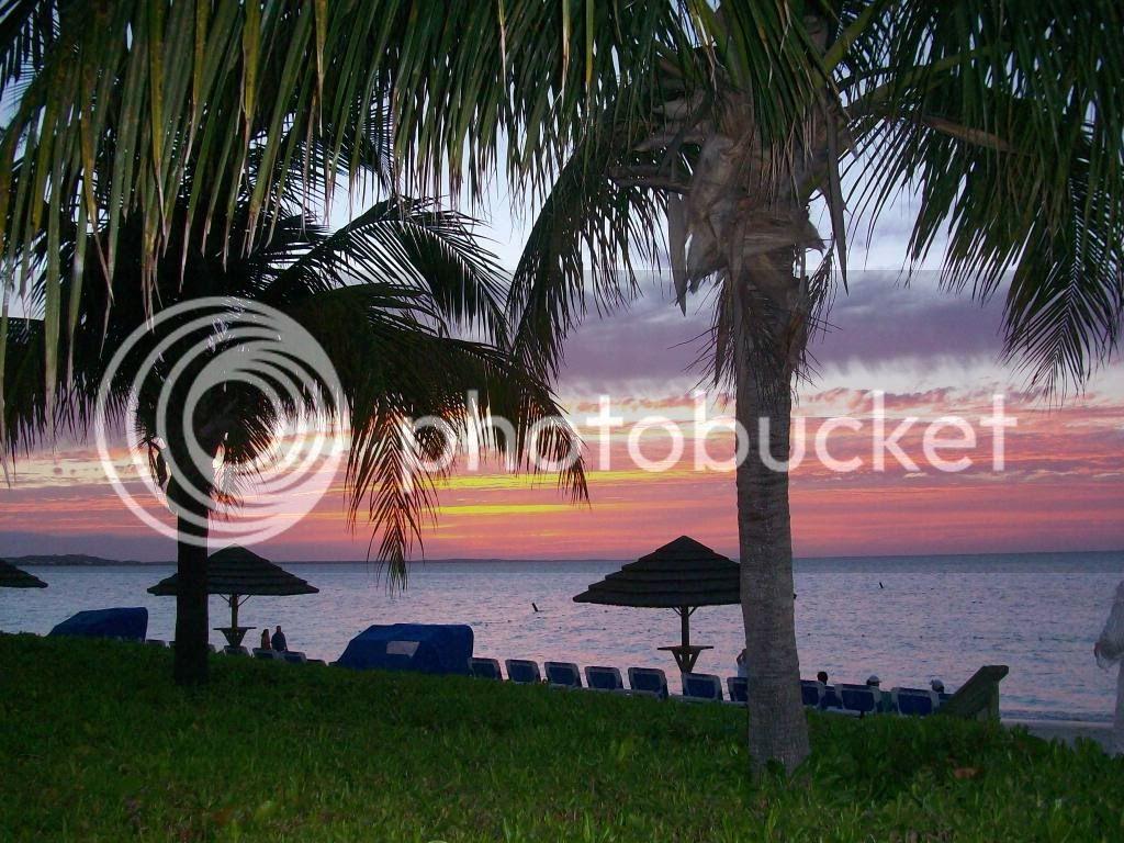 Turks & Caicos Pics 100_0448
