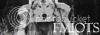 Afiliados Normales • Fullmon100x35