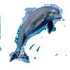 PNG-i za PhotoShop, GIMP i ostale programe za crtanje 81