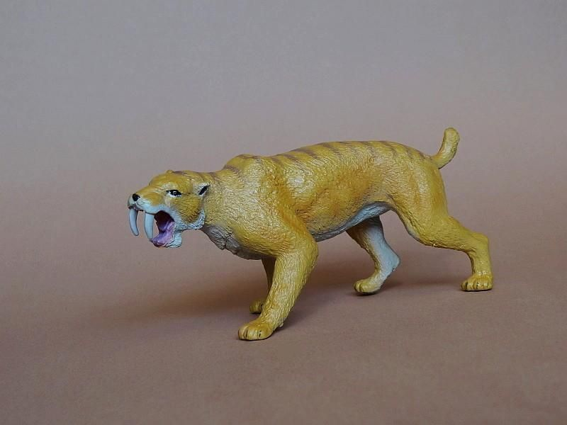 Favorite - Prehistoric Life Softmodel - Smilodon fatalis FavoriteSmilodon03