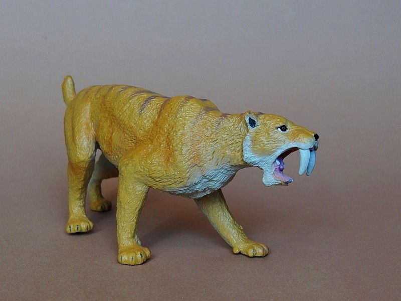 Favorite - Prehistoric Life Softmodel - Smilodon fatalis FavoriteSmilodon07