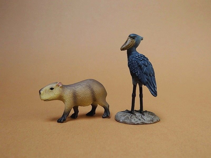 My first Eikoh models, - but I hope they are not the last ;-) Eikohcapybara04