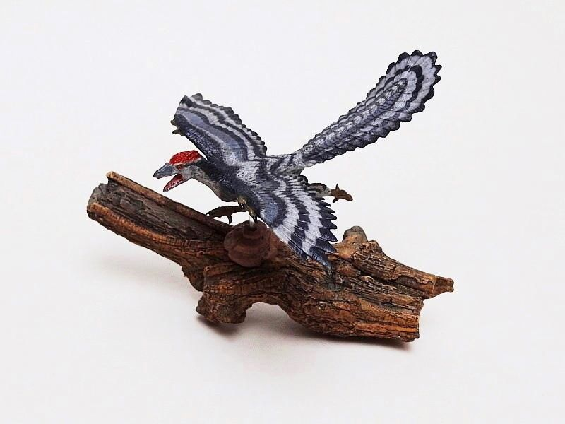 Favorite, Dinosaur Softmodel - Archaeopteryx Favorite%20Archaeopteryx%2001