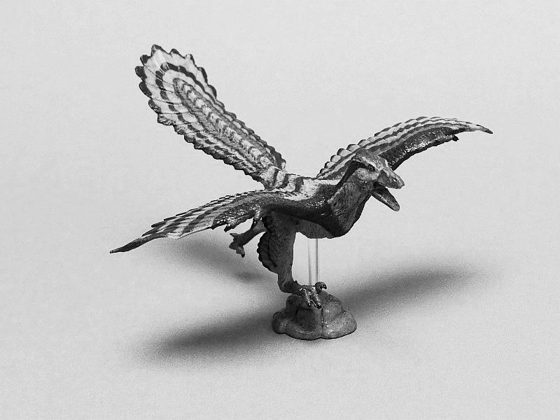 Favorite, Dinosaur Softmodel - Archaeopteryx Favorite%20Archaeopteryx%2005