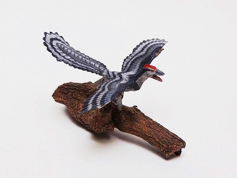 Favorite, Dinosaur Softmodel - Archaeopteryx Favorite%20Archaeopteryx%2006