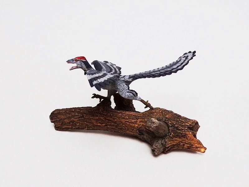 Favorite, Dinosaur Softmodel - Archaeopteryx Favorite%20Archaeopteryx%2009