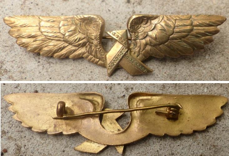 Insigne / brevet aviation Parc