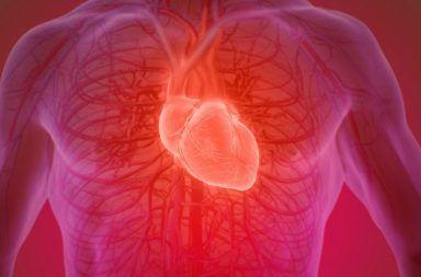 منبر البحوث المتخصصة والدراسات العلمية  يشاهده  23456 زائر Heartbeatscience_web_1024-384x253