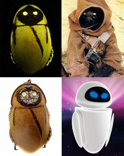 Светящиеся тараканы - миф или реальность? 397838_600