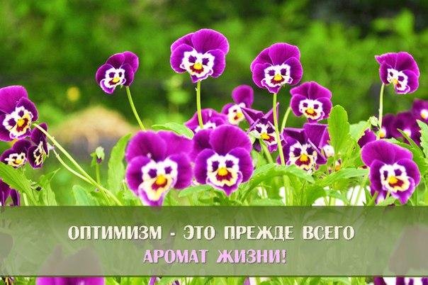 Дорогие форумчане!давайте делиться с друг другом позитивной энергией) 4526669_original