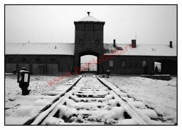 """Станция """"Освенцим"""":""""Евреев просят сойти на перрон.В концлагере им предстоит принять 885114_600"""
