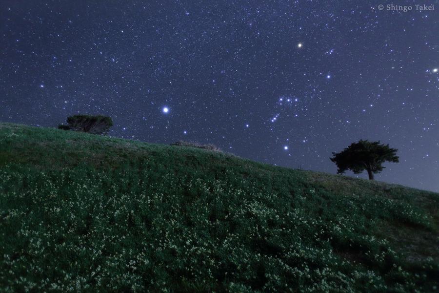 Звёздное небо и космос в картинках - Страница 5 1886424_900