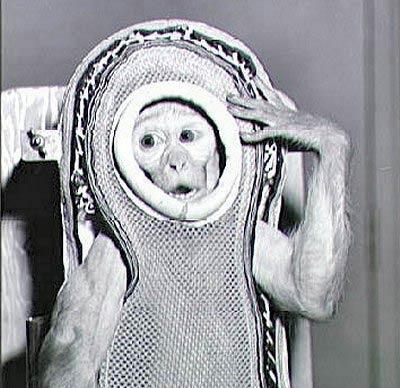 Влияние Луны, базы пришельцев, обман, связанный с путешествием человека на Луну / 55 03