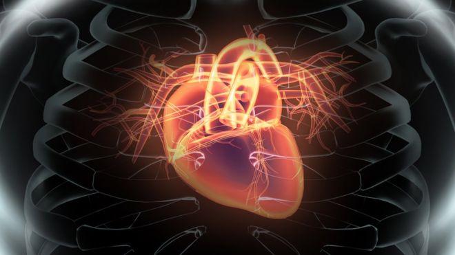 Ultimos Avances en Ciencia y Salud - Página 2 _93032905_thinkstockphotos-516727646