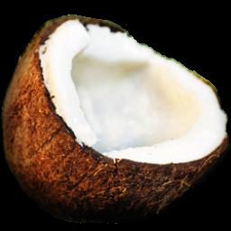 Красивое тело Coconut-icon