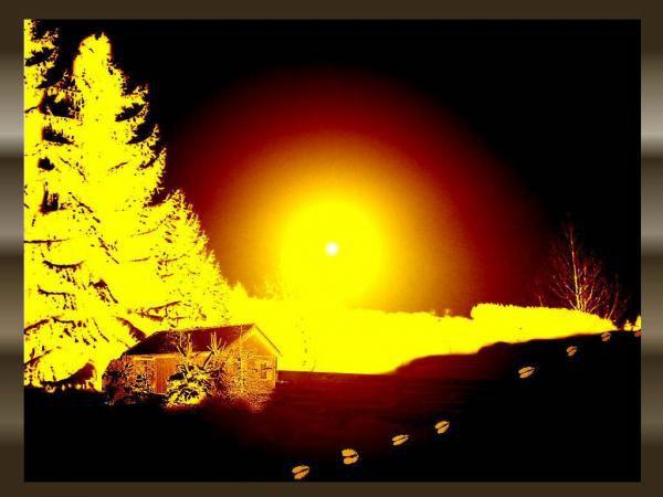 Empreintes mystèrieuses dans la neige Neige-20008