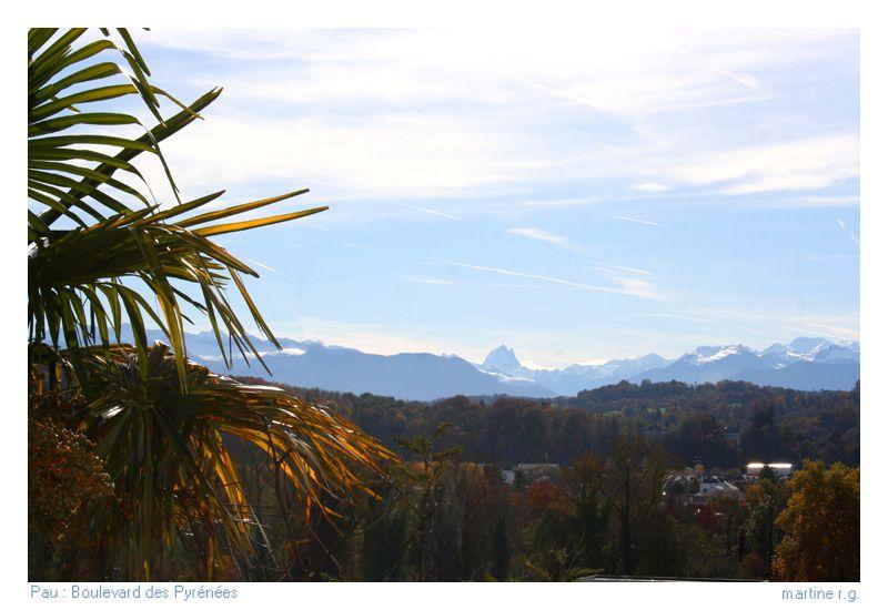 Comment appelle t on les habitants de......'villes de france - Page 11 Pau-boulevard-des-pyrenees