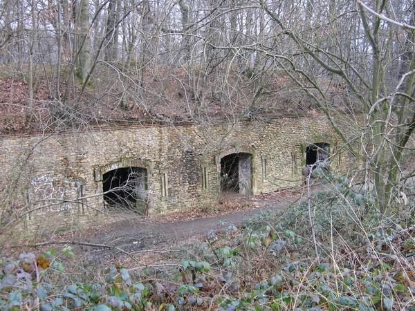 Bunker - France 4 - Page 2 Batterie-fort-domont