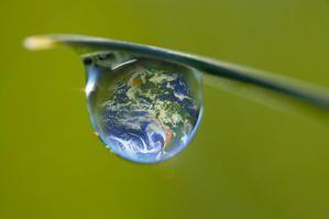 grenelle environnement............un espoir Environnement