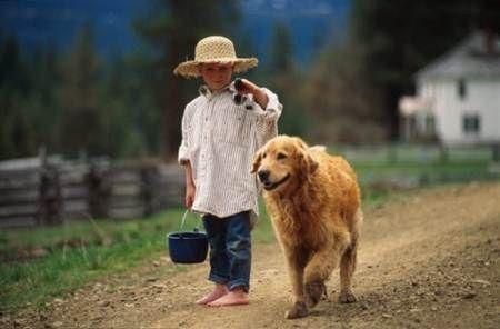 Les chiens Baby Sitters.. Magnifique... Enfant-chien