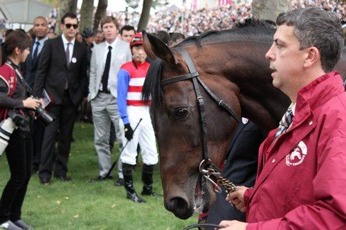 Arc 2010 + prix de Diane 2011.. 2010Arc-Fame-and-Glory