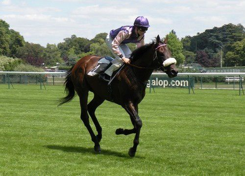 Arc 2010 + prix de Diane 2011.. 20110702c3-AbsolutlyYes2