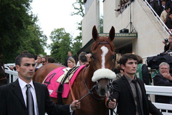 Saison 2012 C5-FrenchFifteen