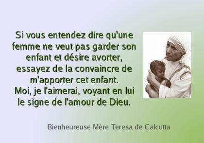 Michel blogue les 450 citations/Bienheureuse Mère Teresa de Calcutta/Navigation Libre/ Teresa