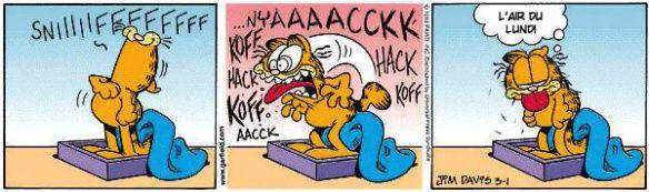 [Jeu] Association d'images Garfield_monday1