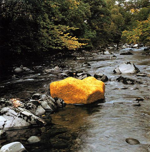 [Jeu] Association d'images - Page 5 Andy-goldsworthy-2