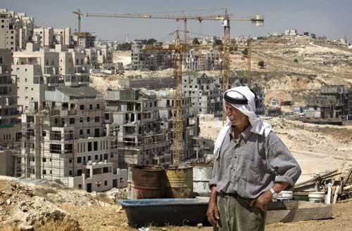Palestine : 65 ans de colonisation Colonies-israeliennes
