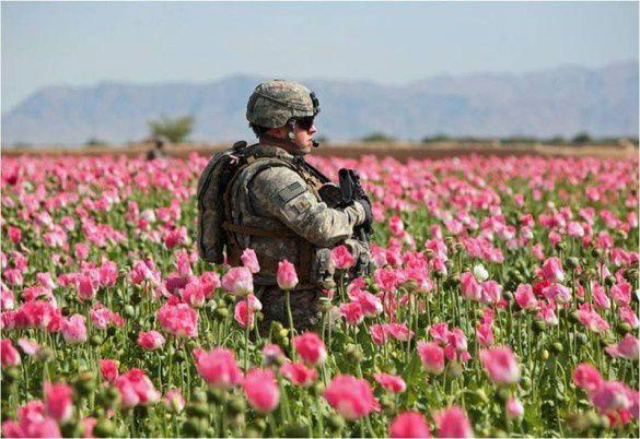 Les États-Unis encouragent le trafic de drogue en Afghanistan Afghanistan-opium-soldier