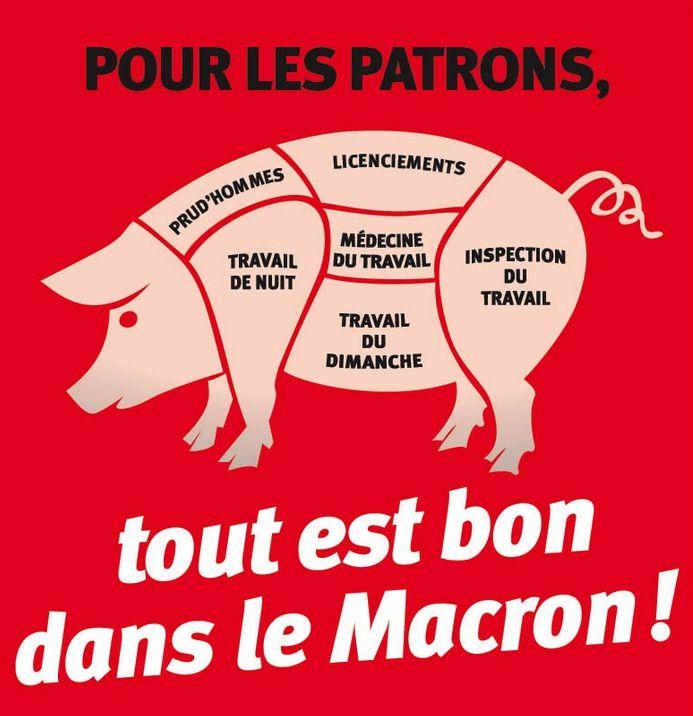 Pour les patrons, tout est bon dans le Macron ! Lemacron