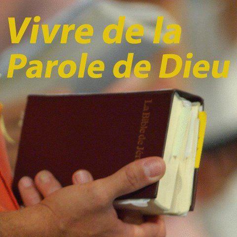 La joie de l'Évangile/Citation/148<>151 599267_10151917605110032_640162450_n