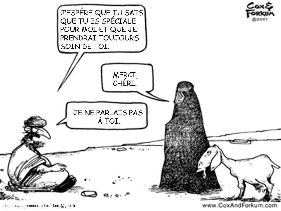 On peut rire de tout ? la réponse Caricature-Islam--la-Femme-en-Islam