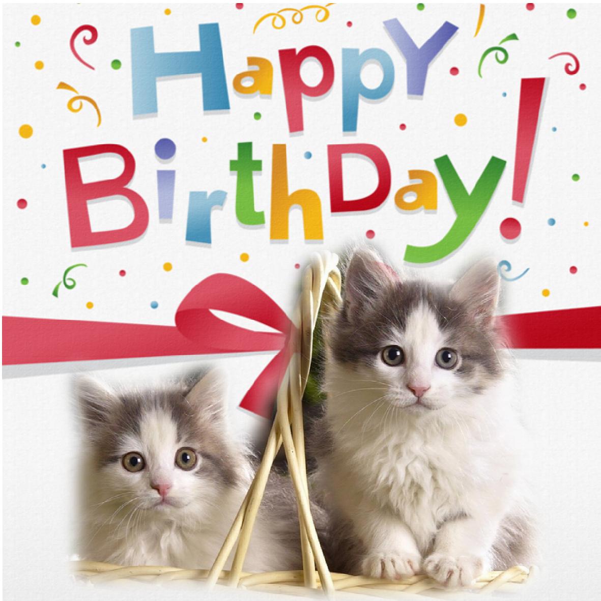 topic du souhaitage de bon anniversaire - Page 9 Carte-anniv-13