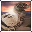 L'antre d'Idril Pigeon