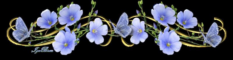 Bon Lundi 2015-05-15-SEAPARATEUR-FLEUR-PAPILLON-BLEUS-2