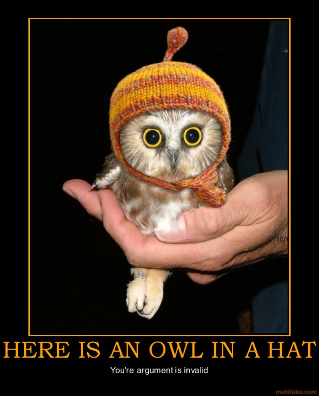 Luna Bass Guitar? Here-is-an-owl-in-a-hat-owl-hat-argument-invalid-demotivational-poster-1284335141