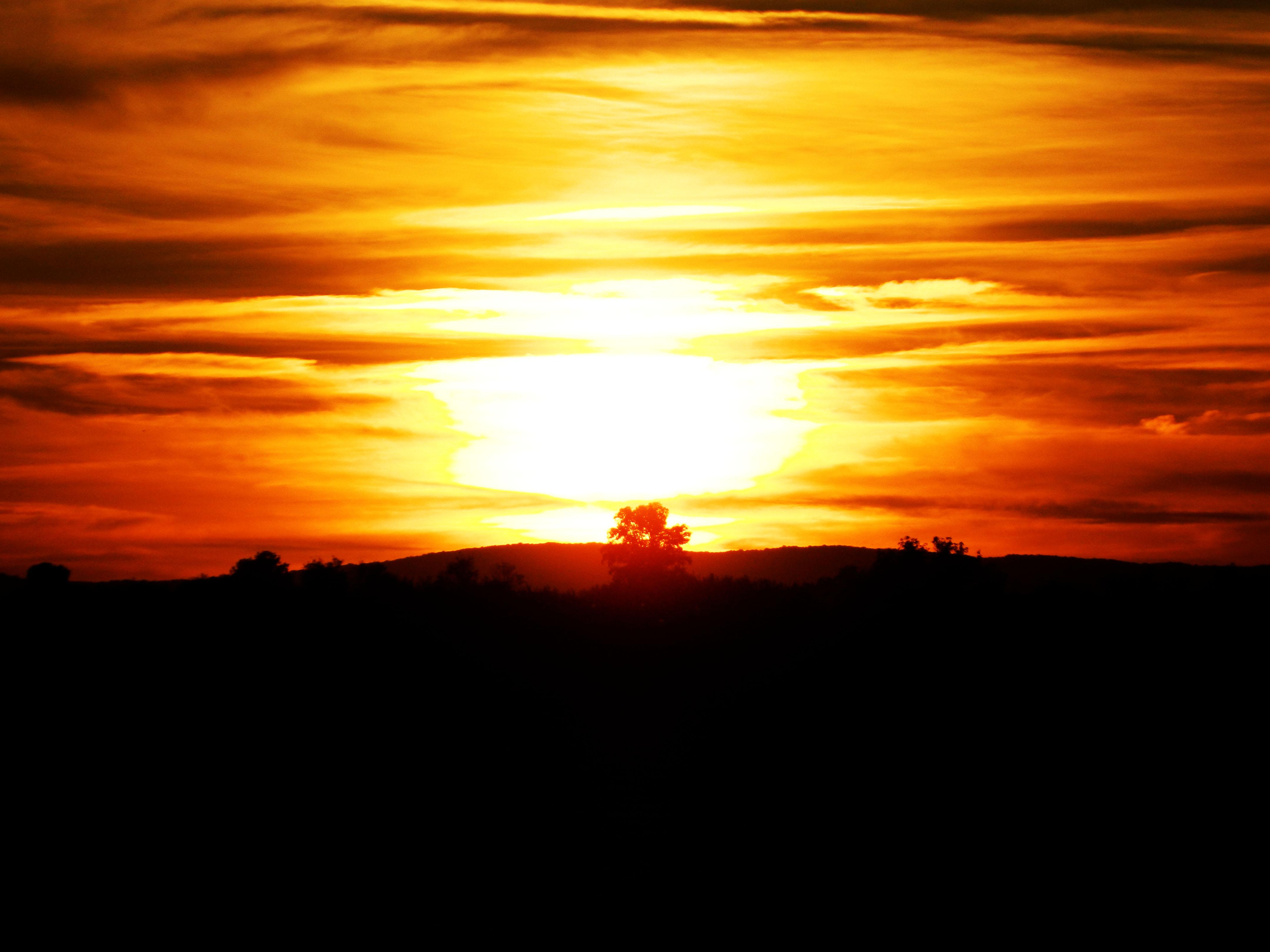 Zalazak sunca  - Page 4 284472-7545724-r