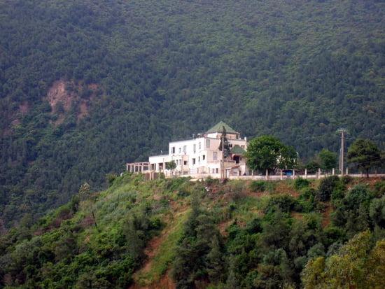 ولاية المدية Autres-maisons-blida-algerie-2879907489-816143