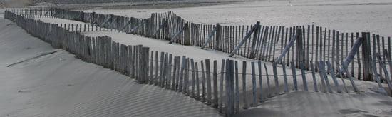 George Orwell, blogueur posthume Autres-mers-et-plages-saint-marie-de-la-mer-france-1383055661-1229194