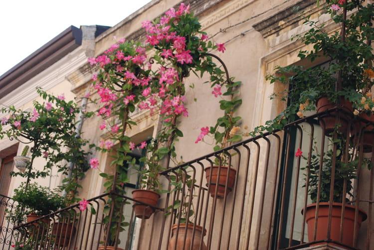 BALCONS ET TERRASSES FLEURIES - Page 36 Le-balcon-fleuri-1762528057-1573320